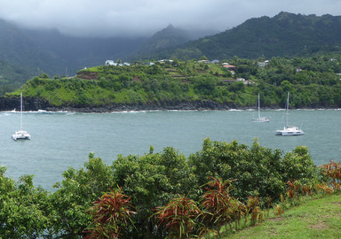 Kallima in the Marquesas: or the trials and tribulations of dealing with an often complicated Internet.