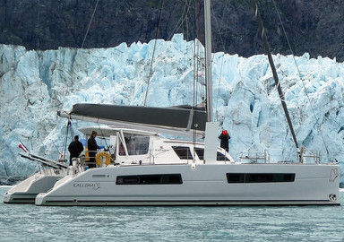 Kallima in Alaska: Glacier Bay, or the wild life