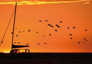 Walvis Bay - Namibia