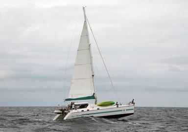 Engine, saildrive leg, propeller…we tell you everything!