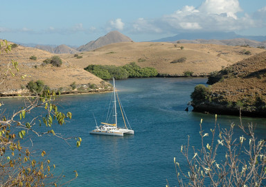 At the Heart Of The Island Of Flores…