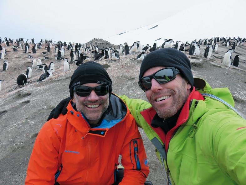 Libellule in Antarctica