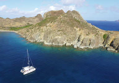Sea View: Between St Barts and Barbuda, A Whale Of An Encounter!