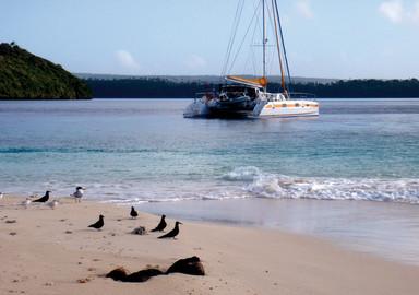 HIGH RISK CRUISING IN TONGA…