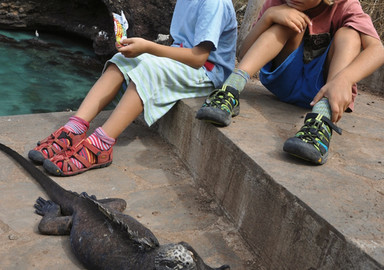 Planet Océan: The magic of the Galapagos