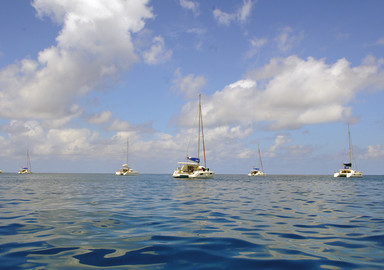 Chartering a multihull: the price of happiness!