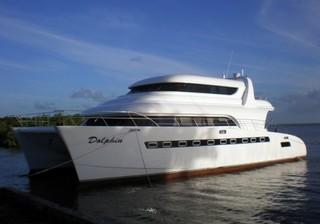 Dolphin 700 Trawler