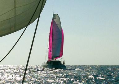 Happy Koumata: the Atlantic in the wake