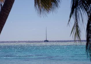 Moana in Palmerston Island